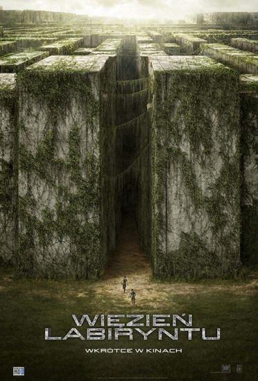 Więzień labiryntu / The Maze Runner (2014) PL.BRRip.XviD-GR4PE   Lektor PL