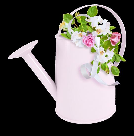 tubes_fleurs_tiram_21