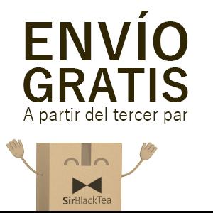 banner_enviogratis