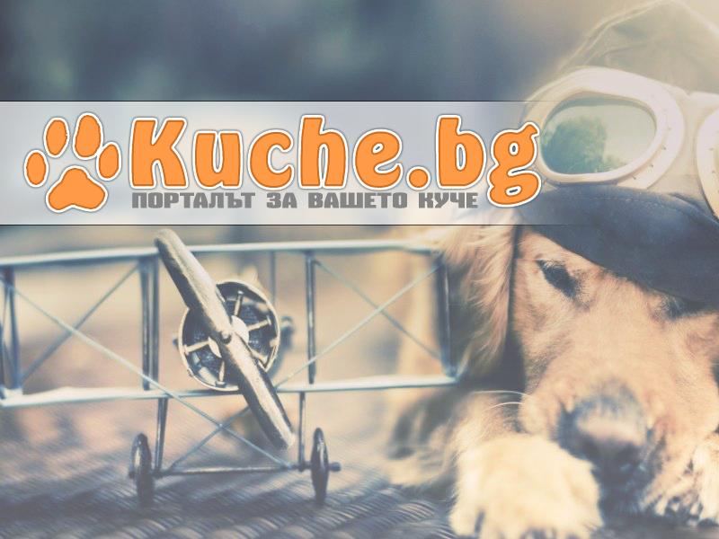kuche_test.png