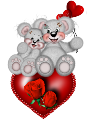 teddy_saint_valentin_tiram_211