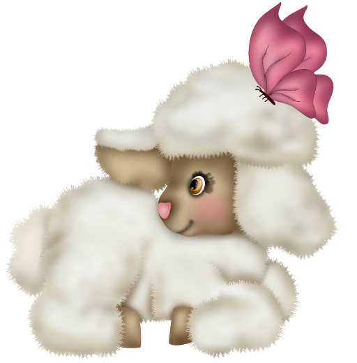 mouton_tiram_49