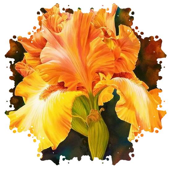 tubes_fleurs_tiram_535