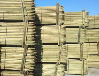 Tutores de madera, tutores para olivo fabricados en madera