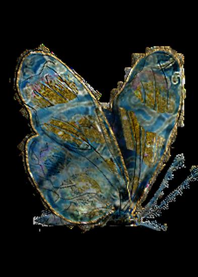 tubes_papillon_tiram_625