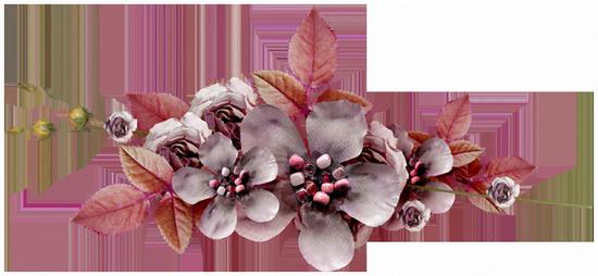 tubes_fleurs_tiram_51
