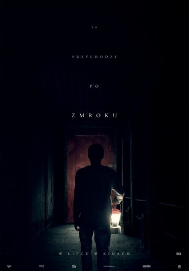 To przychodzi po zmroku / It Comes at Night (2017) PL.BRRip.XviD-GR4PE / Lektor PL