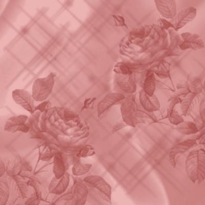 texture_fond_st_valen_tiram_65