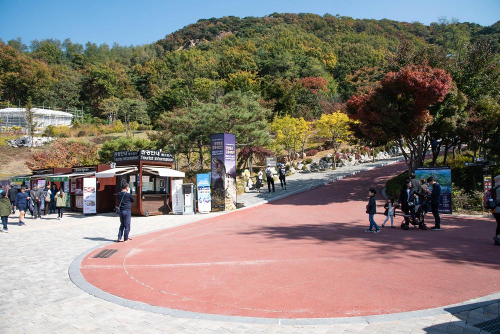 Gwangmyeong-Cave