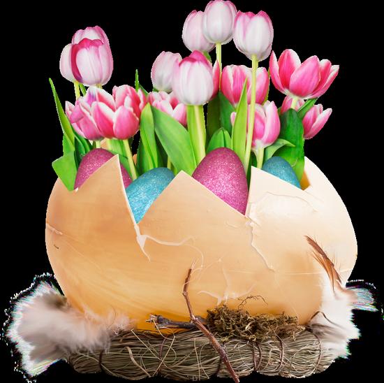 fleurs_paques_tiram_100