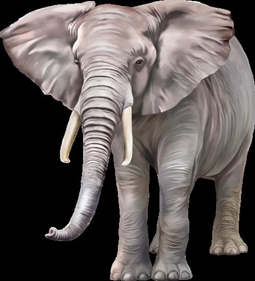 tubes_elephants_tiram_248