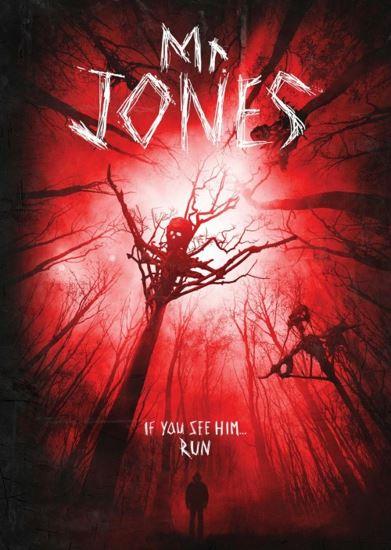 Mr. Jones (2013) PL.HDTV.XviD-DiDi | Lektor PL