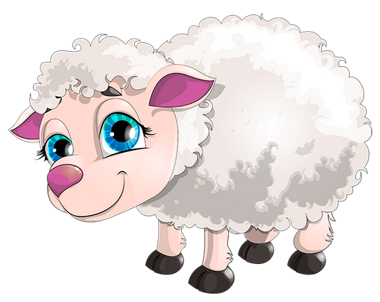 mouton_tiram_6