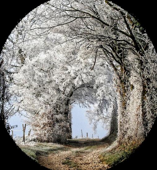 paysage_tiram_638
