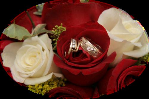 tubes_fleurs_saint_valentin_tiram_51