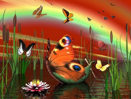 tubes_papillon_tiram_369
