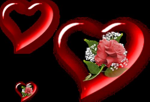 coeur_saint_valentin_tiram_287