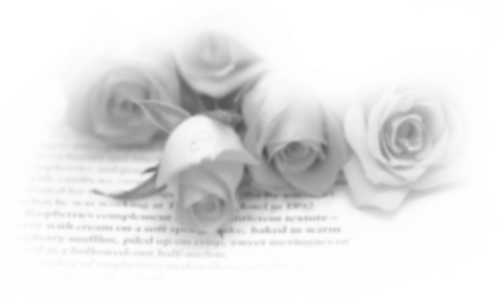 tubes_fleurs_saint_valentin_tiram_27