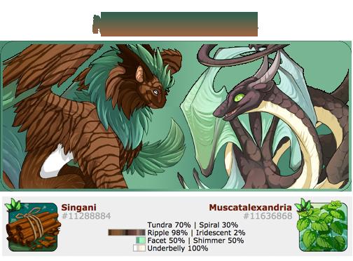 Muscatalexandriax_Singani.png