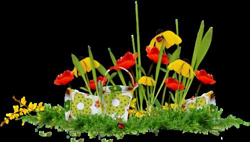 fleurs_paques_tiram_159