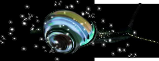 tubes_escargots_tiram_113