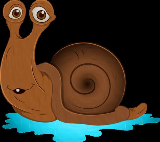 tubes_escargots_tiram_236