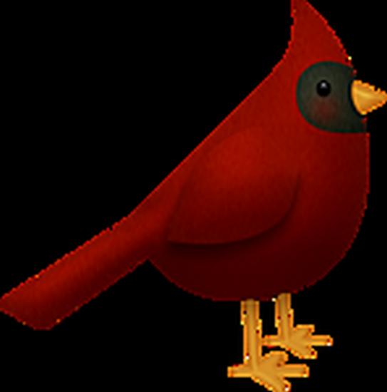 tubes_oiseaux_tiram_72