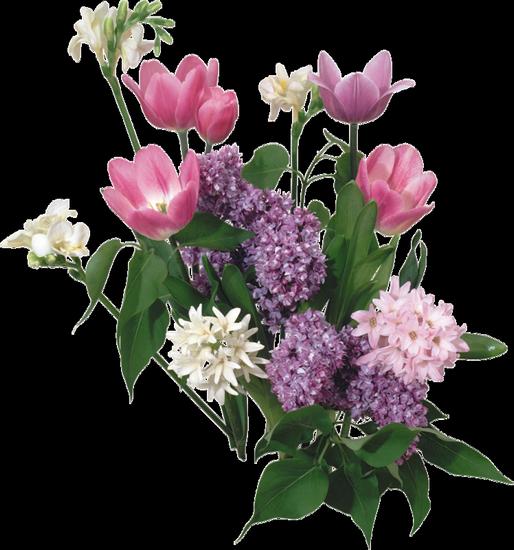 tubes_fleurs_tiram_38