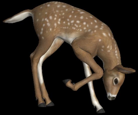 animaux-noel-tiram-61