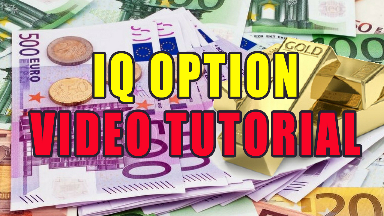 Try IQ Binary Option Traders US