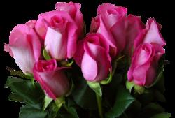 tubes_fleurs_saint_valentin_tiram_131