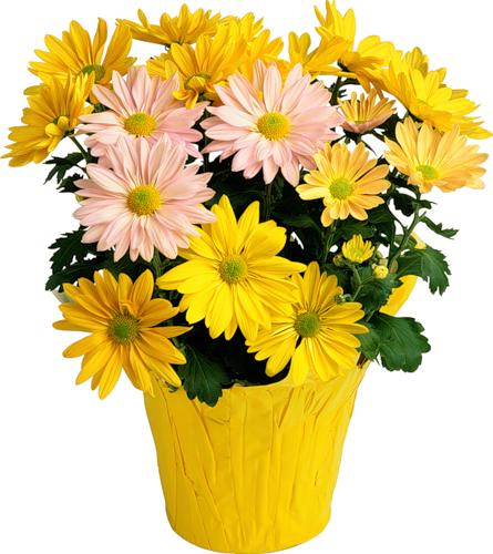 tubes_fleurs_tiram_878