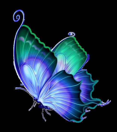 tubes_papillon_tiram_729