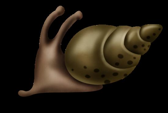 tubes_escargots_tiram_49