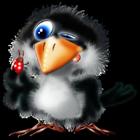 tubes_oiseaux_tiram_101
