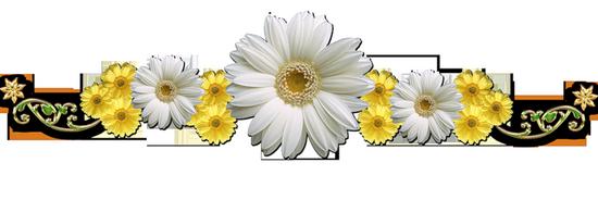 tubes_fleurs_tiram_8