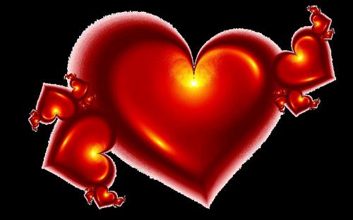 coeur_saint_valentin_tiram_159