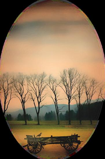 paysage_tiram_465