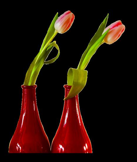 tubes_fleurs_tiram_134