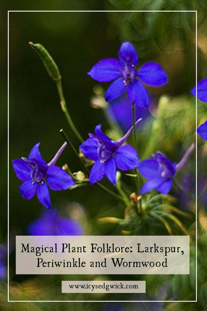 Toxic plants often still possess magical properties, although extreme caution is required. This post examines larkspur, oleander and wormwood.