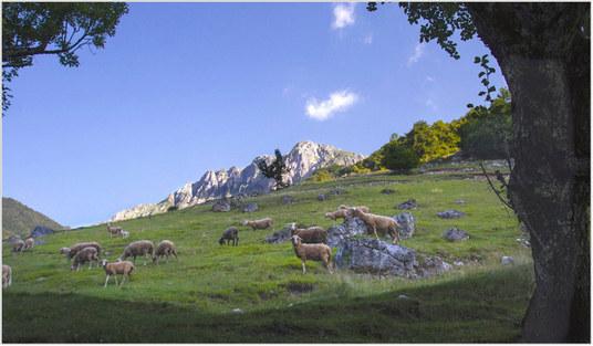 planina3_blog