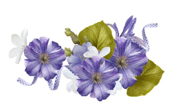 tubes_fleurs_tiram_129