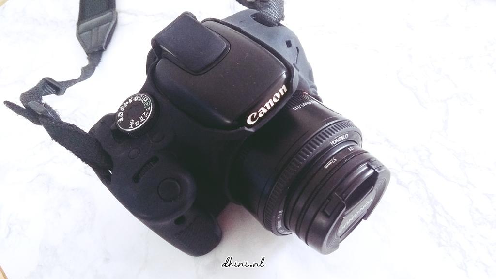 2017_Canon600_D1a