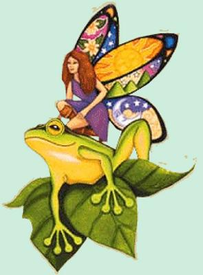 grenouille_tiram_50
