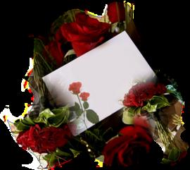 tubes_fleurs_saint_valentin_tiram_141