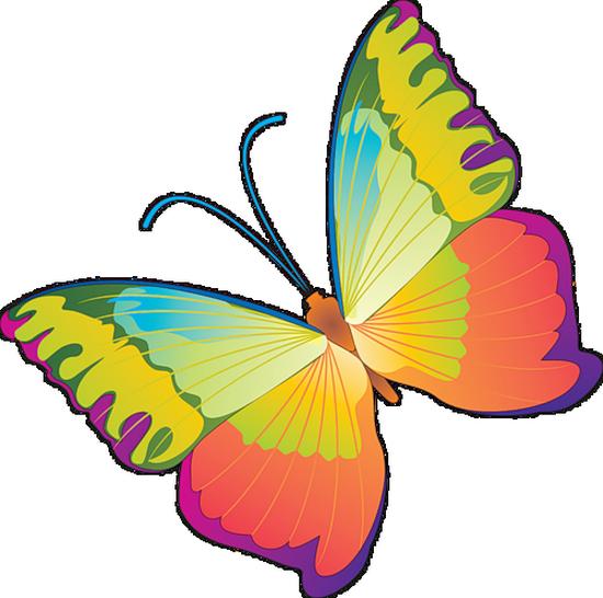 tubes_papillon_tiram_200