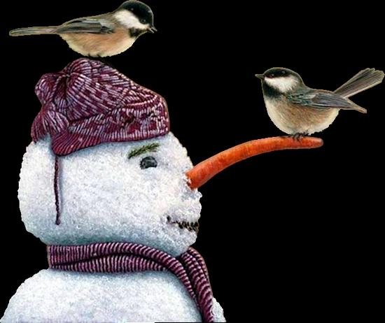 bonhommes-de-neiges-tiram-16