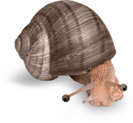 tubes_escargots_tiram_21