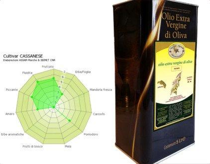 Extra Virgin Cassanese olive, monovarietal 5 liter can, Cassanese olive oil, Cassanese EVOO
