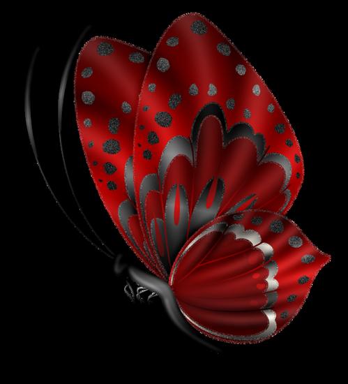 tubes_papillon_tiram_498